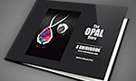 Buy The Opal Story